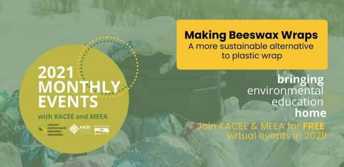 Making Beeswax Wraps: A more sustainable alternative to plastic wrap